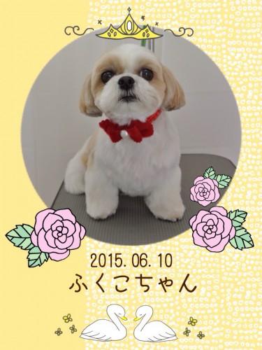 2015.6.10ふくこ