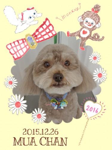 2015.12.26夢亜