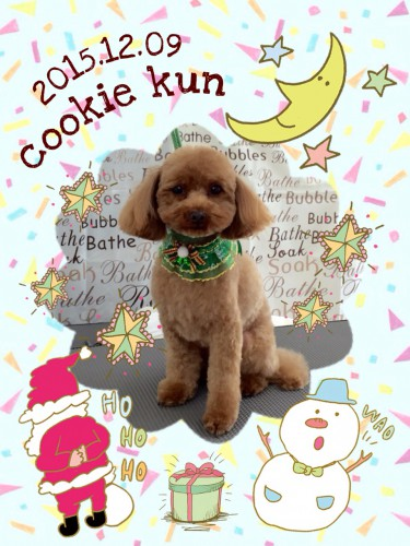 2015.12.9クッキー
