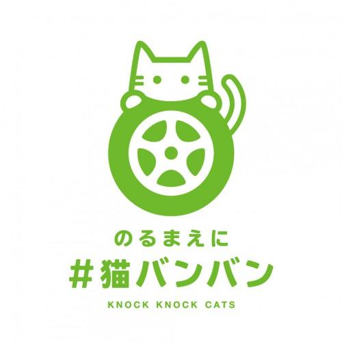 猫バンバンプロジェクト!?