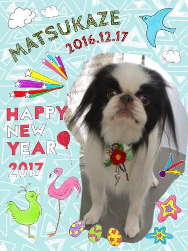 2016.12.17松風
