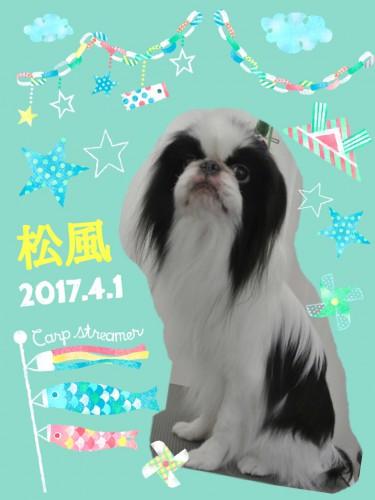 2017.4.1松風