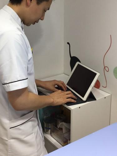 電子カルテ 動物病院