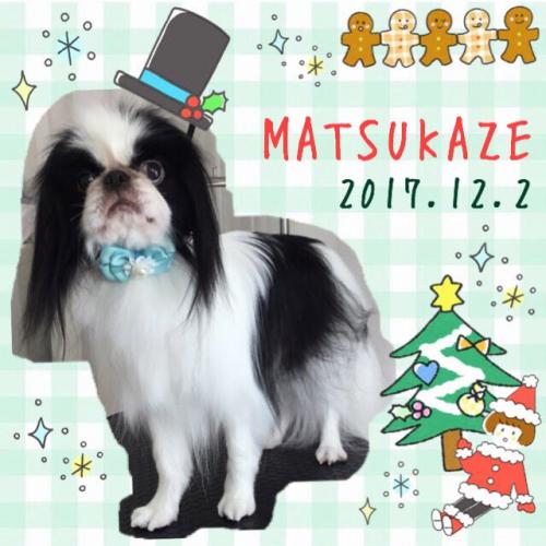 2017.12.02松風