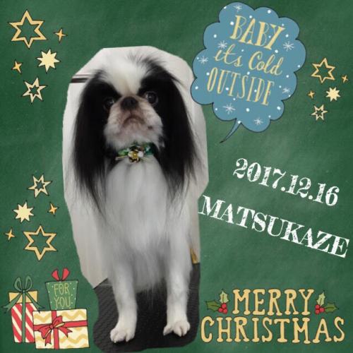 2017.12.16松風