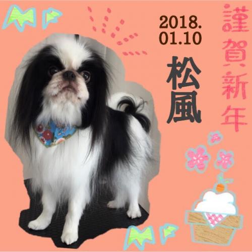 2018.01.10松風
