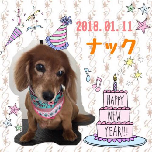 2018.01.11ナック