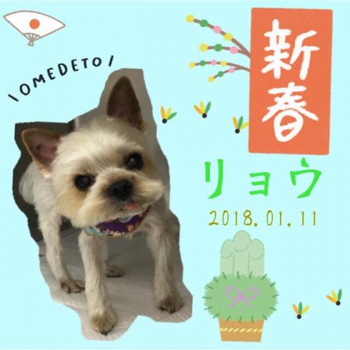 2018.01.11リョウ