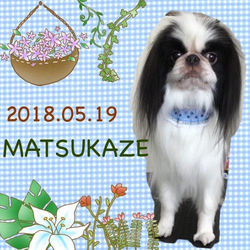 2018.5.19松風