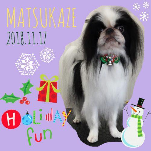 2018.11.17松風