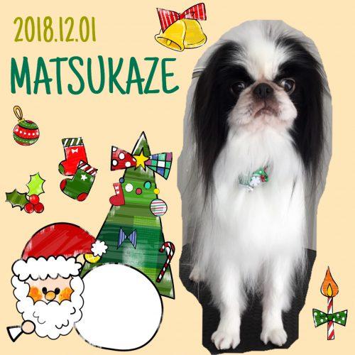 2018.12.1松風