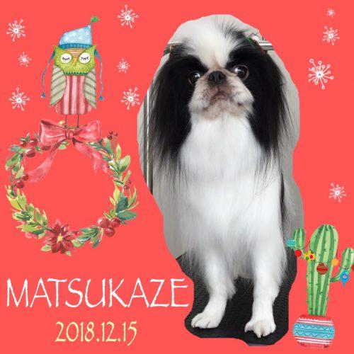 2018.12.15松風