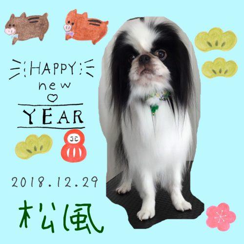 2018.12.29松風