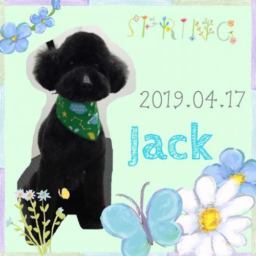 2019.04.17山守ジャック