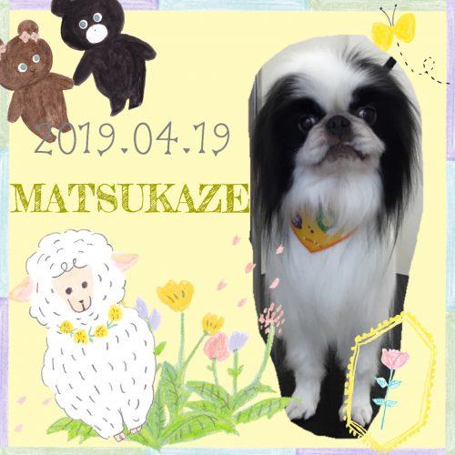 2019.04.20鈴木松風