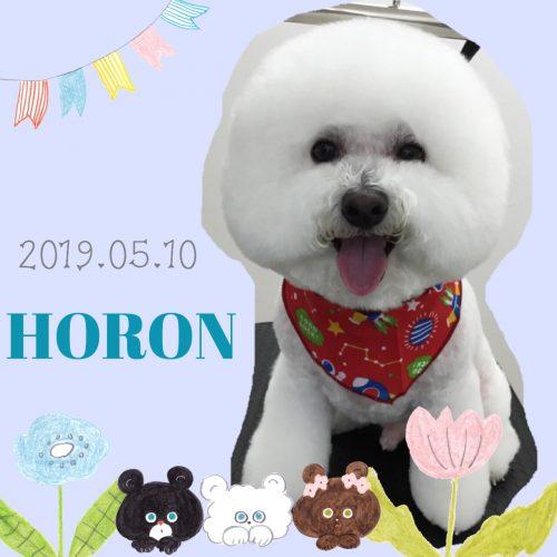 2019.05.10須山ホロン