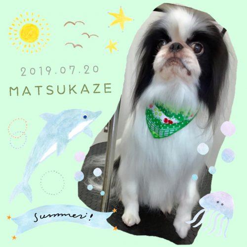2019.7.20松風