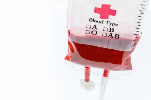 人工血液、動物実験に成功